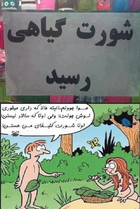 قیمت زنده سکه پارسیان